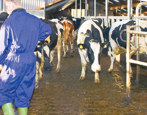 Méthanisation agricole